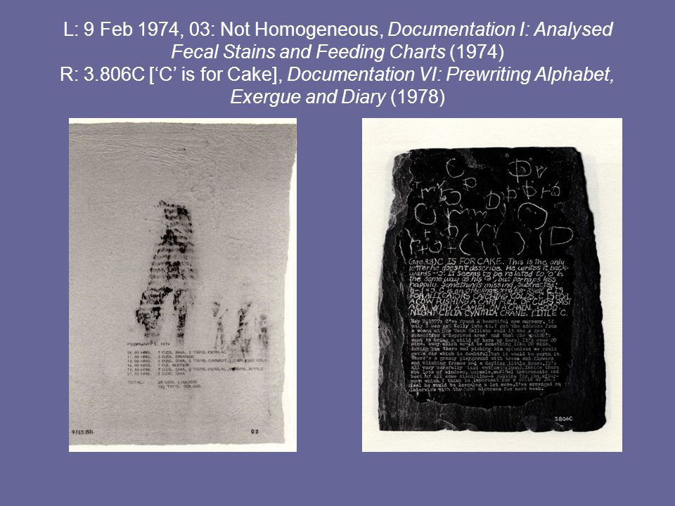 L: 9 Feb 1974, 03: Not Homogeneous, Documentation I: Analysed Fecal Stains and Feeding Charts (1974) R: 3.806C ['C' is for Cake], Documentation VI: Prewriting Alphabet, Exergue and Diary (1978)